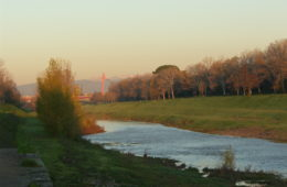 cascine firenze
