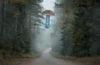 Royal Mushroom di Andrej Polukord