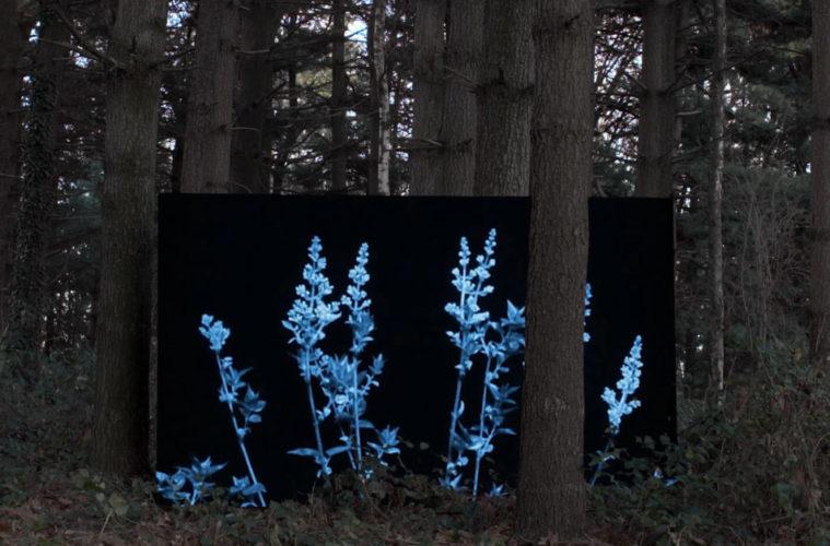 Cambio-Formafantasma alla Serpentine Gallery Stirworld
