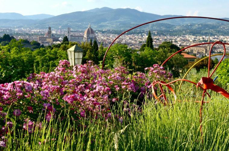 edv garden